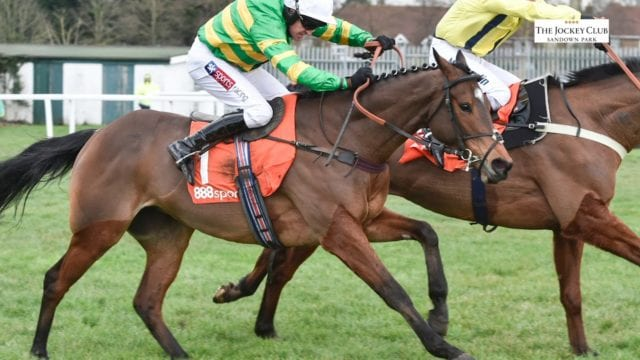 Tingle Creek Chase scaled - Horse Racing Tips
