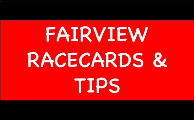 Fairview - Horse Racing Selections: Florrie Webb to build on encouraging debut to win at Clonmel