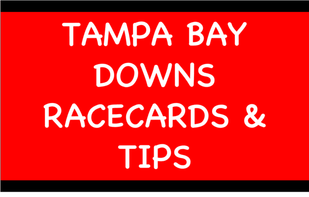 Tampa Bay Downs - Horse Racing Tips: Kitten Rock to bounce back to form dropped in class and trip