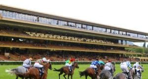 Pontchateau Racecards Horse Racing Tips